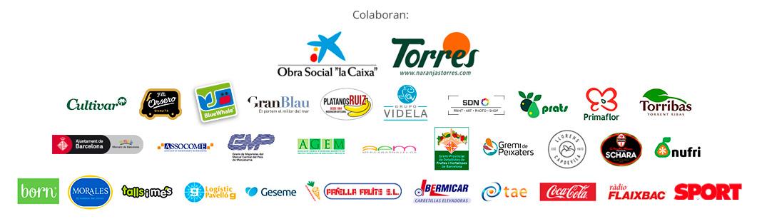 logos_inici_cas_e