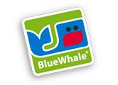 blue_17